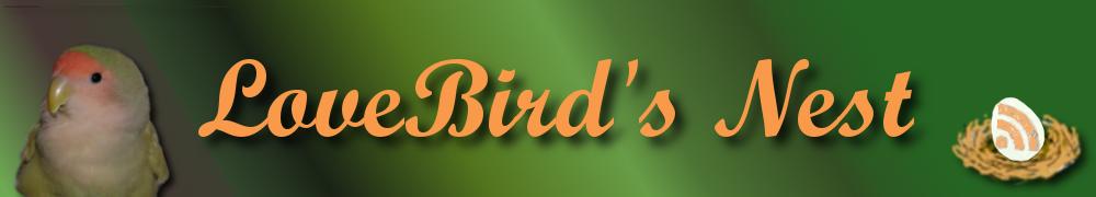 Lovebird's Nest ~ Lovebird Training